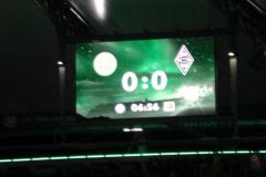2011-02-Wolfsburg-1144