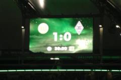 2011-02-Wolfsburg-1147