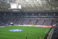 20110828-auf-Schalke-1131