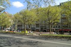 2015-05-03_in-Berlin-1126