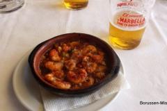 WTL-2017-Marbella-1128