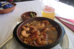 WTL-2017-Marbella-1186