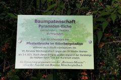 2021-07-Baumpatenschaft-Dessau-14
