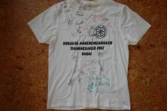 2013-WTL-Shirt-1
