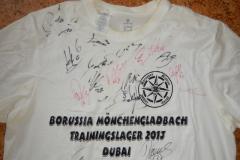 2013-WTL-Shirt-2