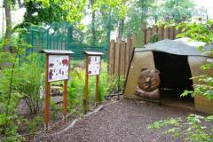 Tierpark-Dessau-129