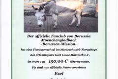 2017-Esel-Luetzen
