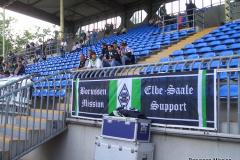 2008-09-Hoffenheim
